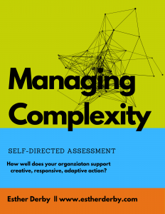 Managing Complexity Self-Directed Assessment
